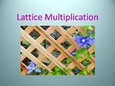 Lattice Multiplication PowerPoint