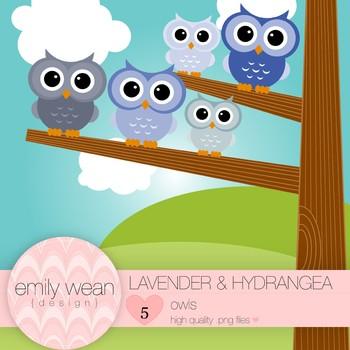 Lavender and Hydrangea - Owl Clip Art