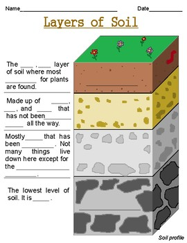 Layers of soil worksheets by mac n cheese coffee and grace for Soil 2nd grade