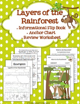 Layers Of The Rainforest Flip Book Anchor Chart Review
