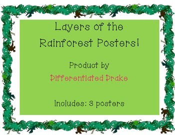Layers of the Rainforest Posters