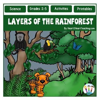 Layers Of The Rainforest Unit Flip Book