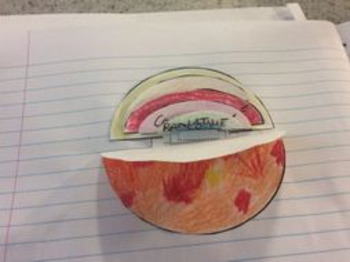 Layers of the Sun foldable &research sheet. Space physics & Astronomy