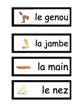 Le Corps - French Vocabulary Activities