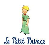 Le Petit Prince Unit Lesson Plans, chapters 20-25 jigsaw r