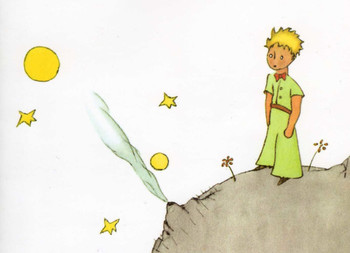 Le Petit Prince Vocabulary and Comprehension Questions