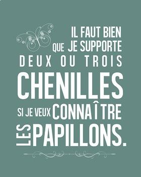 Le Petit Prince - poster bundle