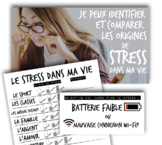 Le Stress Dans Ma Vie (French)