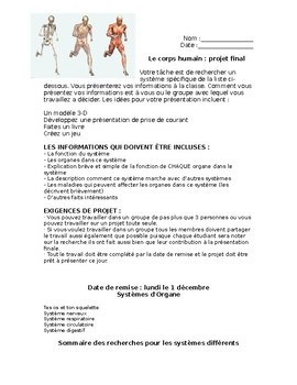 Le corps humain-projet final