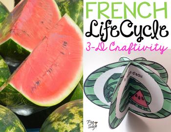 Le cycle de vie d'un melon d'eau - FRENCH Life Cycle Craft