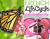 Le cycle de vie d'un papillon - FRENCH Life Cycle Craft