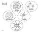 Le cycle de vie d'une araignée - FRENCH Life Cycle Craft
