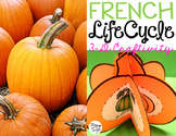 Le cycle de vie d'une citrouille - FRENCH Life Cycle Craft