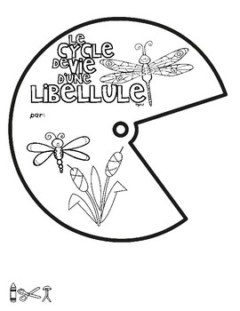 Le cycle de vie d'une libellule - FRENCH Life Cycle Spinner