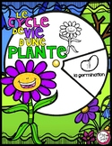 Le cycle de vie d'une plante - FRENCH Life Cycle Spinner