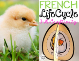 Le cycle de vie d'une poule - FRENCH Life Cycle Craft