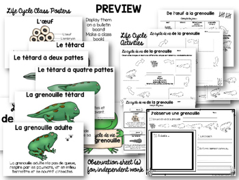 Le cycle de vie de la grenouille - Life Cycle of A Frog Complete Unit