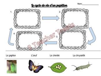 Le cycle de vie - les insectes