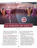 Le diabète de type 1 - Level B1