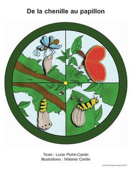 A09-Le monde des insectes