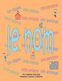 Le nom - French nouns