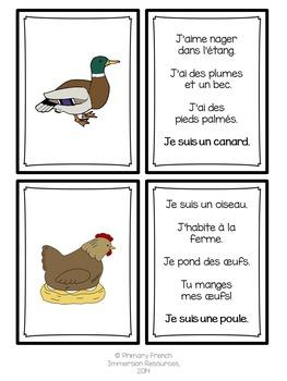 French spring / le printemps - Qui suis-je??