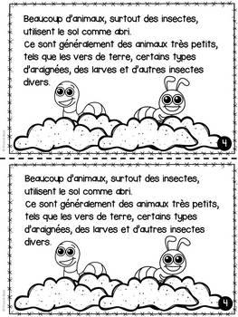 Le sol - Livret de lecture informatif - French Reader on Soil