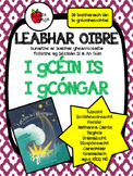 Leabhar Oibre - I gCéin is i gCóngar (Séideán Sí) // Workbook (Séideán Sí)