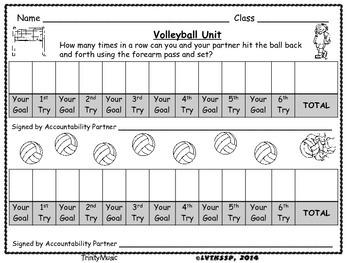 Volleyball Goals