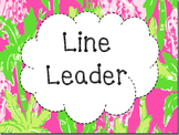 Lilly inspired classroom jobs