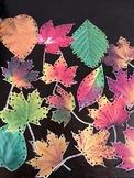 Leaf Activity Set