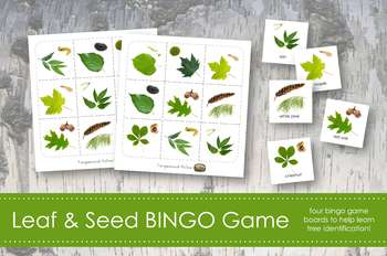Leaf Bingo Game- Montessori- Leaf and Tree Identification Learning Materials