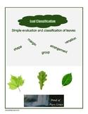 Leaf Classification