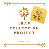 Leaf Collection Project
