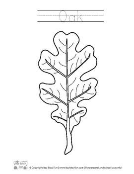 Leaf Coloring Pages - Leaf Activites