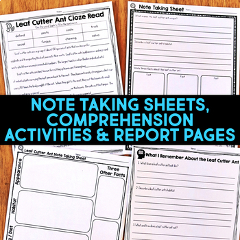 Leaf Cutter Ant: Informational Article, QR Code Research & Fact Sort