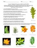 Life Science - Taxonomy - Leaf Dichotomous Key Activity!
