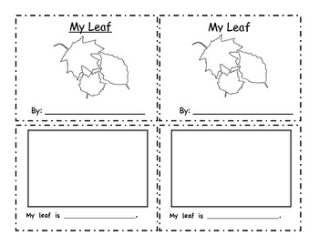 Leaf Exploration Book