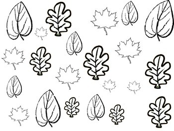 Leaf Graphing