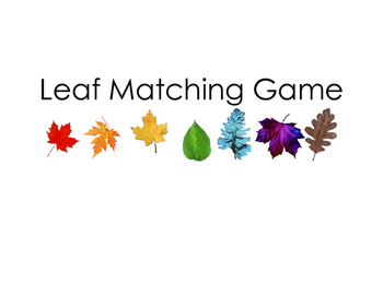 Leaf Inquiry Sentence Matching - I like the red leaf.