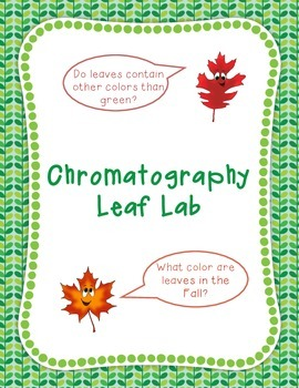 Leaf Lab- Find the True Colors in Leaves!