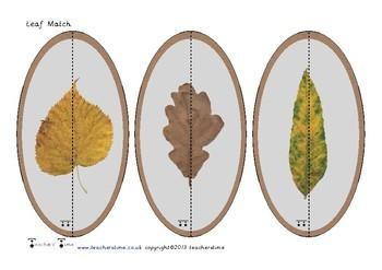Leaf Match