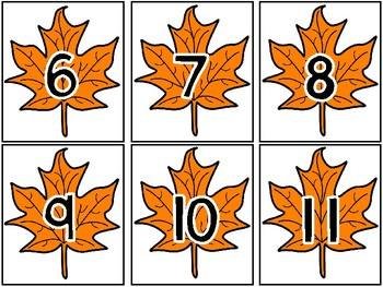 Leaf Match Up! Ordering & Matching Numbers and Arrangements to 20