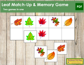 Leaf Match-Up and Memory