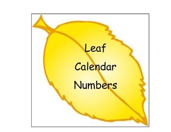 Leaf Number Cards/Calendar Cards