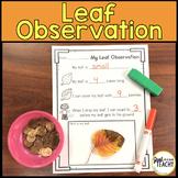 Leaf Observation Freebie