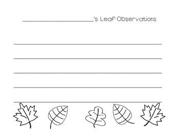 Leaf Observations