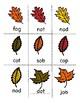 Leaf Pile: A CVC Decoding Game