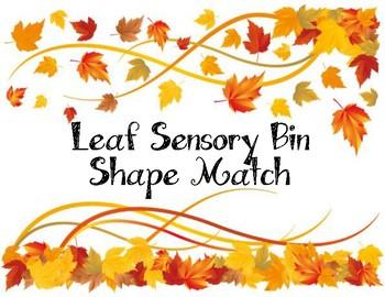 Leaf Sensory Bin Shape Match
