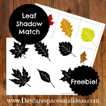 Leaf Shadow Matching Activity